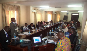 How effective is EIA in Cameroon and Uganda?
