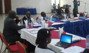 Learning-by-doing: EIA review in Cameroon and Uganda