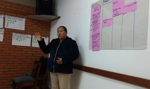 Using ESIA information for monitoring - Bolivia